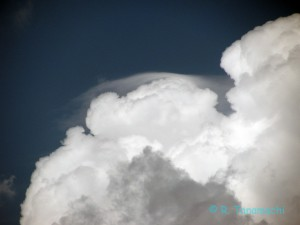 Pileus cloud on top of a pulsing storm near Buffalo, OK