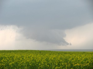Wall cloud over broccoli fields near Victory, OK